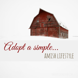 Adopt a Simple Amish Lifestyle