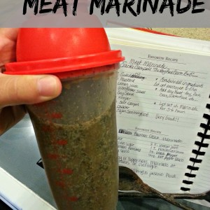 The Best Savory All-Purpose Meat Marinade
