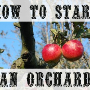 Grow Your Own Orchard: A Podcast
