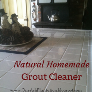 Natural Homemade Grout Cleaner
