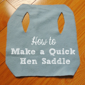 How to Make a Simple No Sew Hen Saddle
