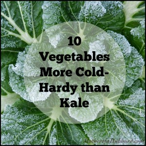 10 Vegetables More Cold-Hardy than Kale