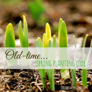 Old-Time Planting Lore