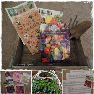 Winter Garden Preparations:  Seeds