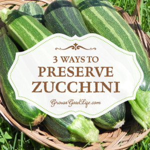 3 Ways to Preserve Zucchini and Summer Squash