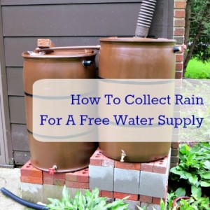 Making Rain Barrels: A Podcast