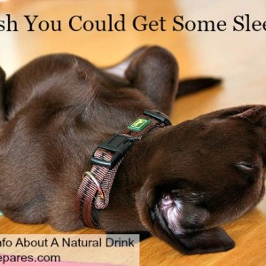 Get Some Sleep With This Natural Sleep Drink