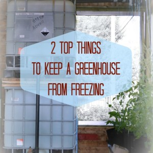 How to Keep a Greenhouse From Freezing