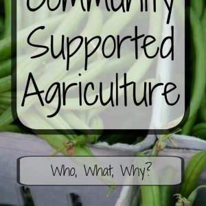 Community Supported Agriculture: Backbone of Suburban Homesteading