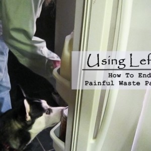 Using Leftovers – How To End The Painful Waste Painlessly