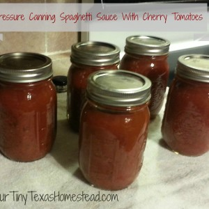 Pressure Canning Spaghetti Sauce with Cherry Tomatoes