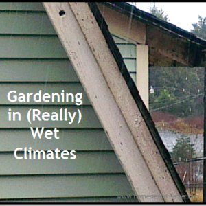 Gardening in Wet Climates