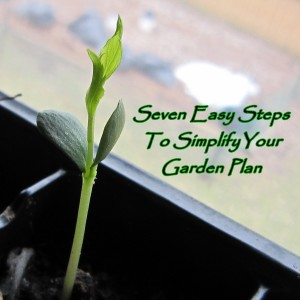 Seven Easy Steps to Simplify Your Garden Plan