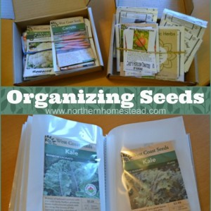 2 Simple Ways to Organize Your Seeds