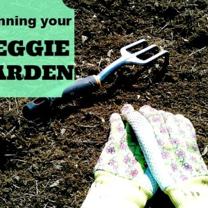 Vegetable Garden Planning Made Easy