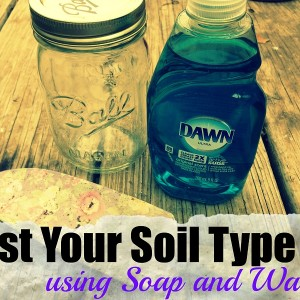 Testing Your Garden Soil Type