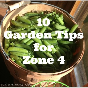 Garden Tips for Zone 4