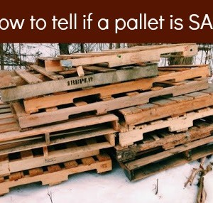 How to Tell if a Pallet is Safe to Use