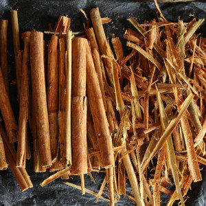 Why Cinnamon Belongs In Your Garden