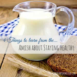 4-things-to-learn-from-the-amish-about-staying-haelthy