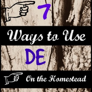 7 Ways to Use Diatomaceous Earth on the Homestead l Homestead Lady