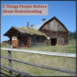 5 Things People Believe About Homesteading