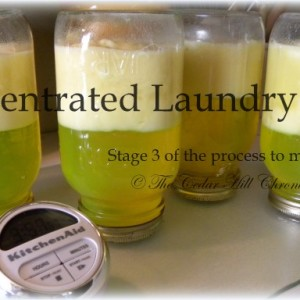 Concentrated Whipped – Homemade Laundry soap