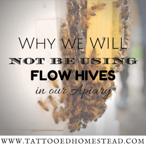 Why We Will Not Be Using Flow Hives in our Homestead Apiary