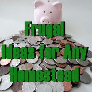 Frugal Ideas for Any Homestead