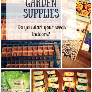 Gathering Garden Supplies to Start Your Seeds Indoors