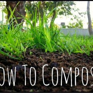 A Simple Guide to Composting