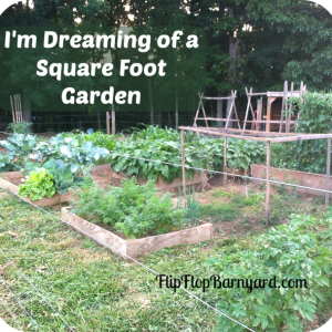 I'm Dreaming of a Square Foot Garden