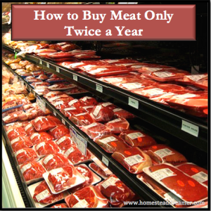 How to Buy Meat Only Twice a Year