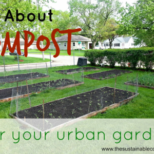 Composting Basics for the Urban Homesteader