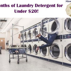 6 Months of Laundry Detergent for Under $20!