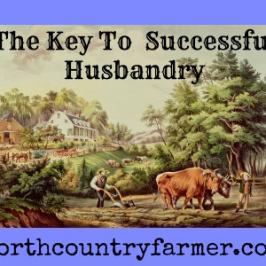 The Key To Successful Husbandry