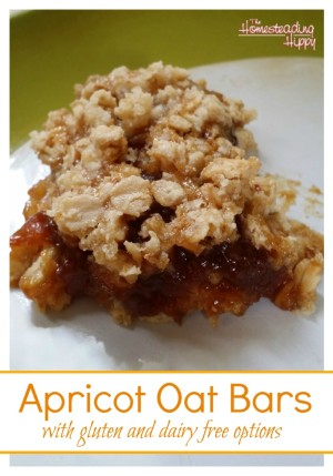 These apricot oat bars are a delicious and nutritious option for every ...