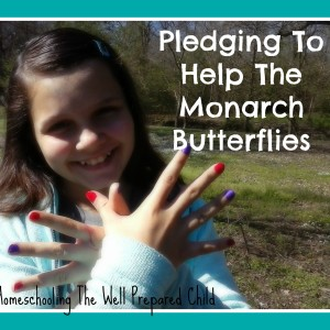 Pledging To Help The Monarch Butterflies
