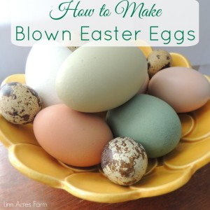 How to Make Blown Easter Egg Decorations