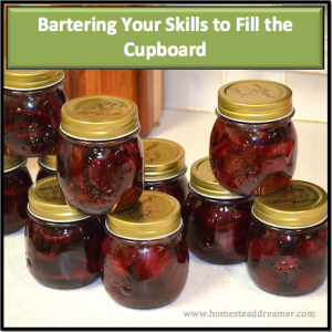 Bartering Your Skills to Fill the Cupboard