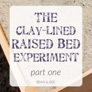 The Clay-Lined Wicking Bed Experiment