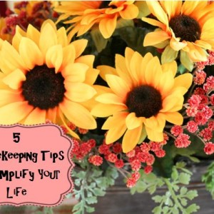 5 Housekeeping Tips to Simplify Your Life