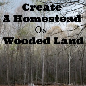 How To Create A Homestead On Wooded Land