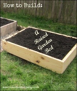 How to build raised garden beds homestead bloggers network for Building a raised garden