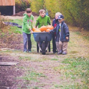 Gardening With Kids: A Harvest of Ideas and Tips
