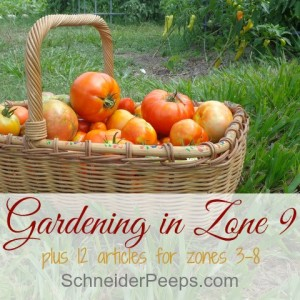How to get the most from you gardening zone