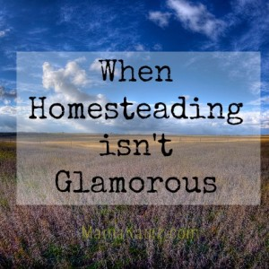 When Homesteading Isn't Glamorous