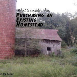 Purchasing an Existing Homestead