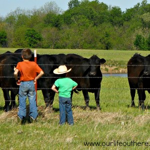 Moving To Your Homestead With Kids