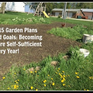 2015 Garden Plans and Goals: Becoming More Self-Sufficient Every Year!